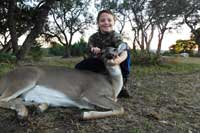Whitetail doe