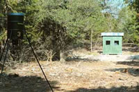 Hunting Blind at Buck Ranch